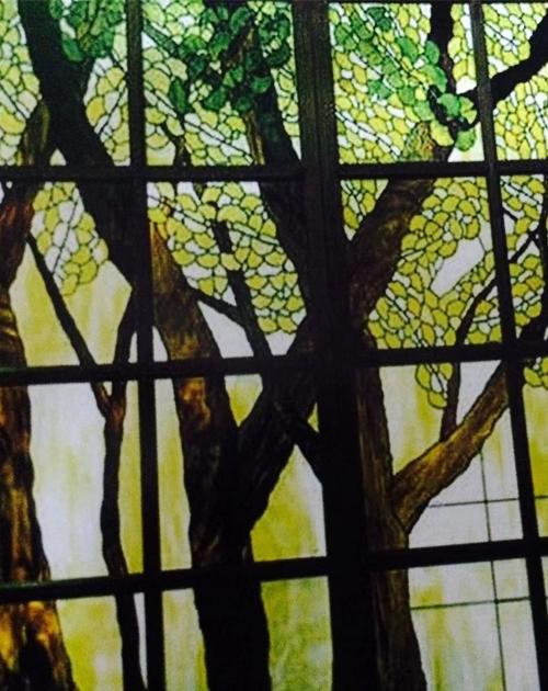 树木彩色玻璃